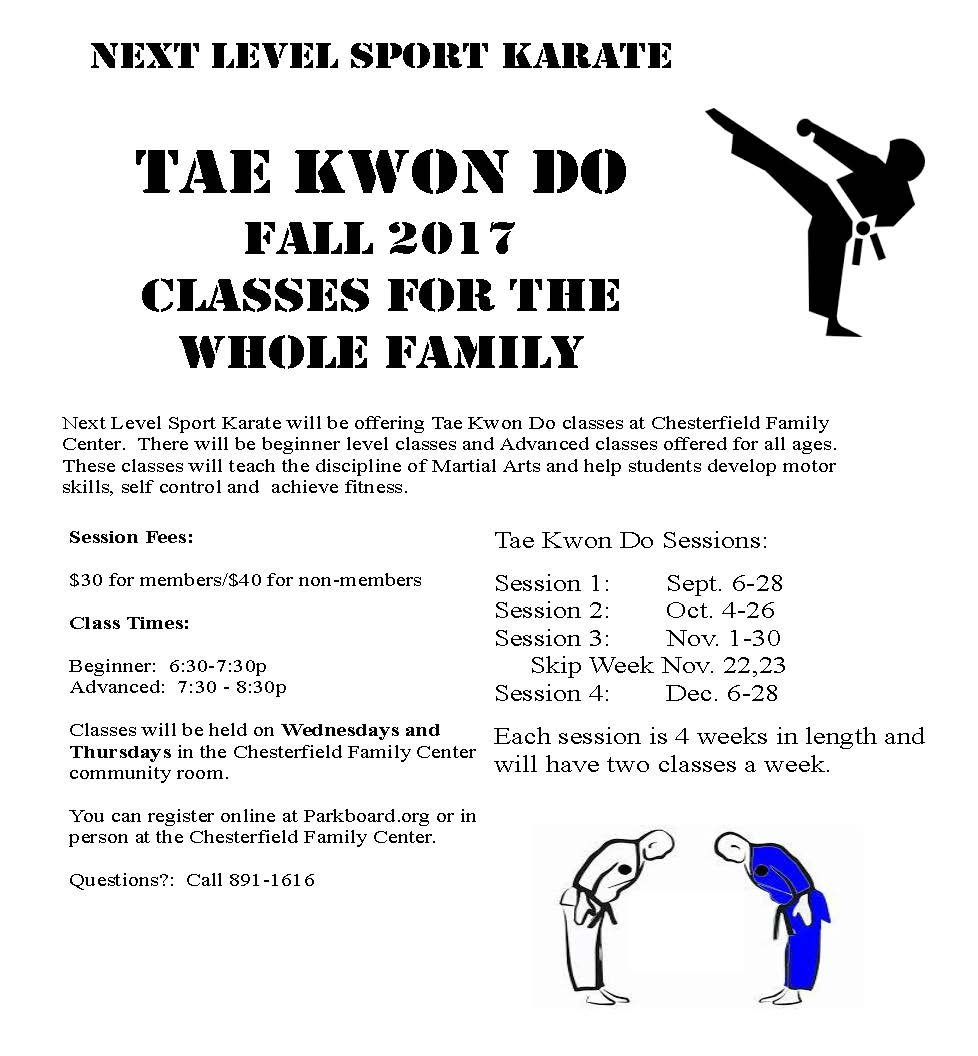 Tae Kwon Do Summer 17 Flyer