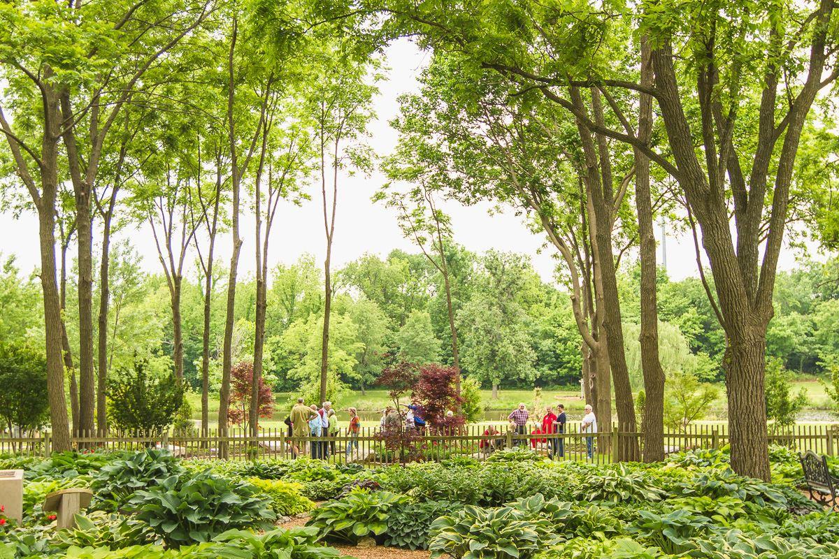 The Hosta Garden Springfield Greene County Park Board