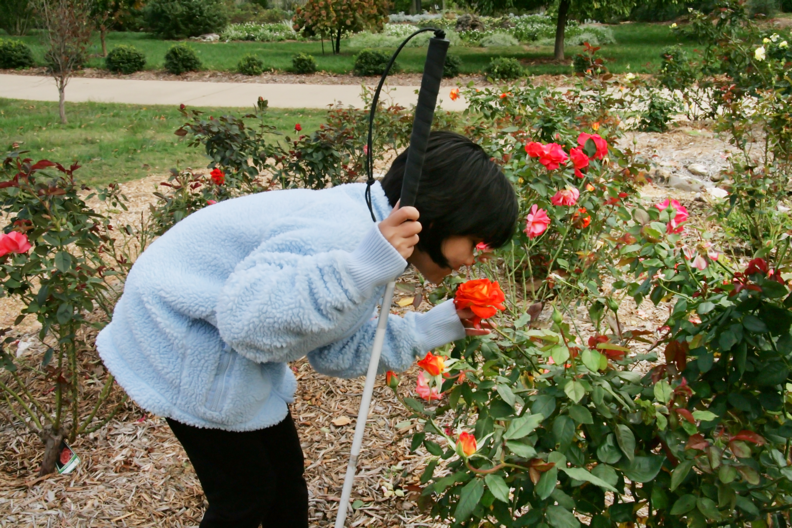 all gardens are sights to behold but the sensory garden provides special experiences for all five senses - Sensory Garden