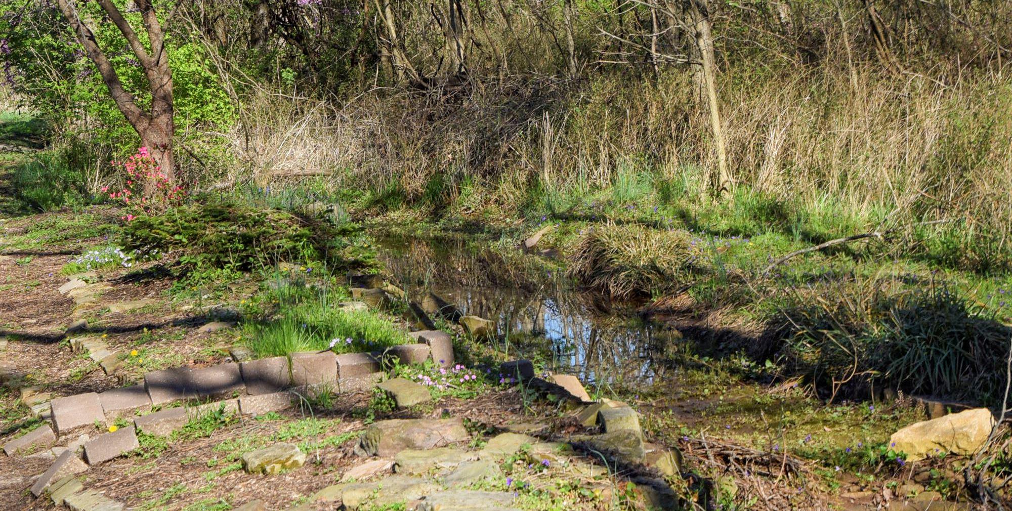 Woodland Garden | Springfield-Greene County Park Board